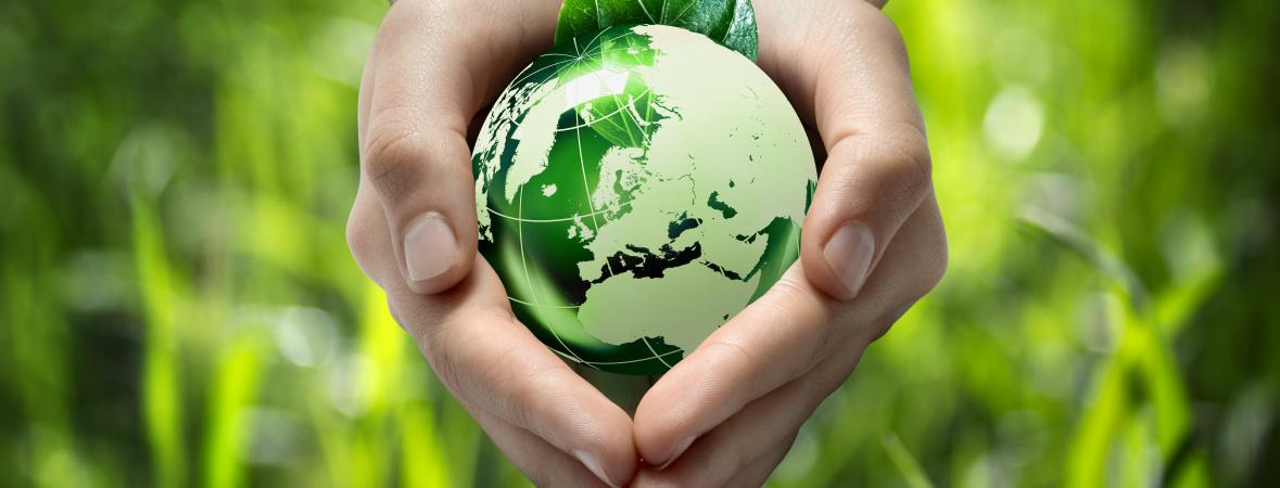 energy efficient - hands holding small green globe