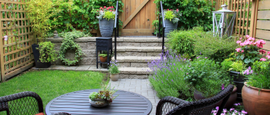 outdoor patio spaces - yard full of plants and flowers in planters