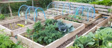 keep your garden organized