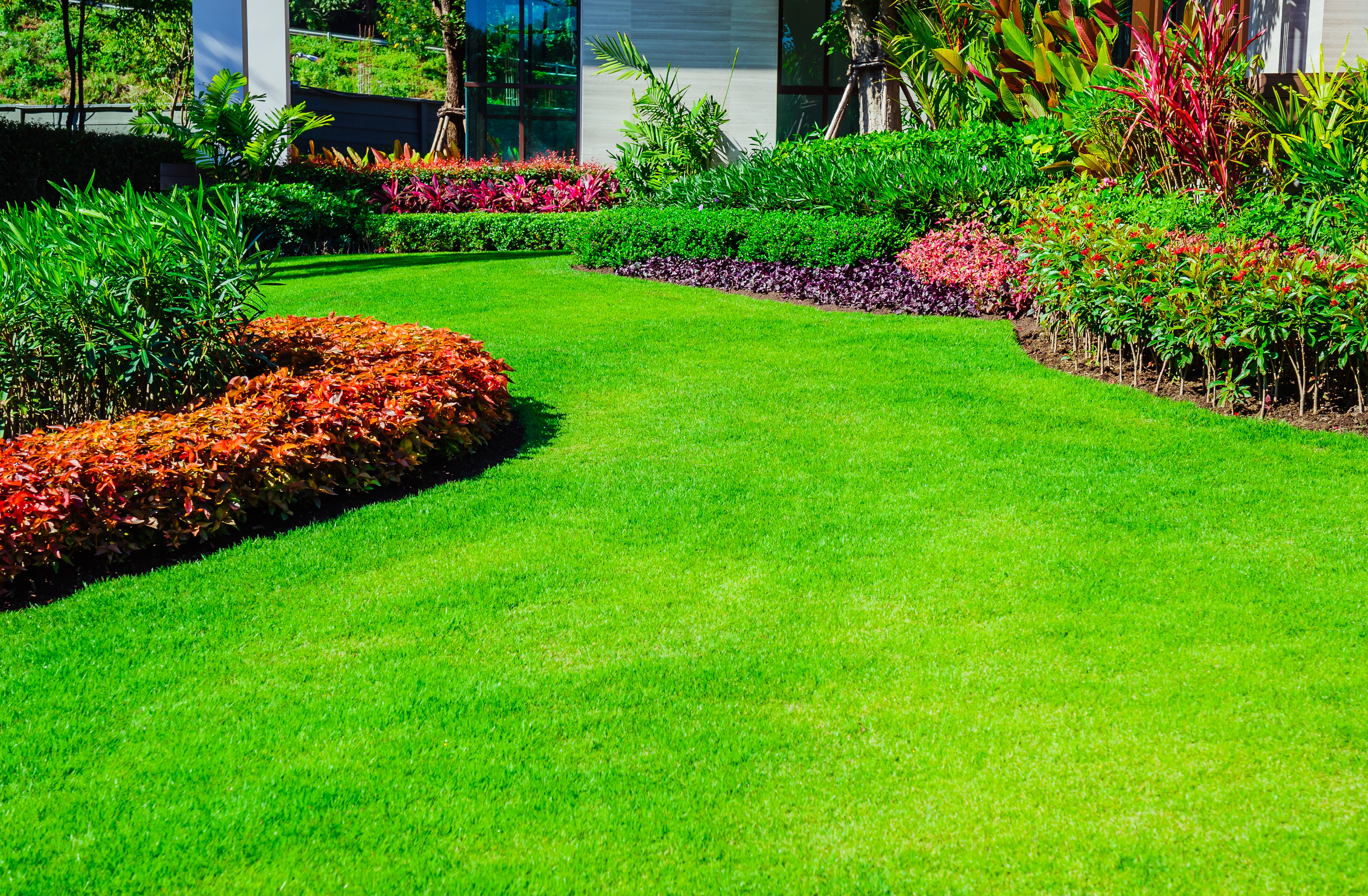 Which Of These 5 Types Of Lawn Grass Is Right For Your Custom Home
