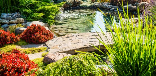 custom home landscaping ideas - landscaped yard with plants and pond