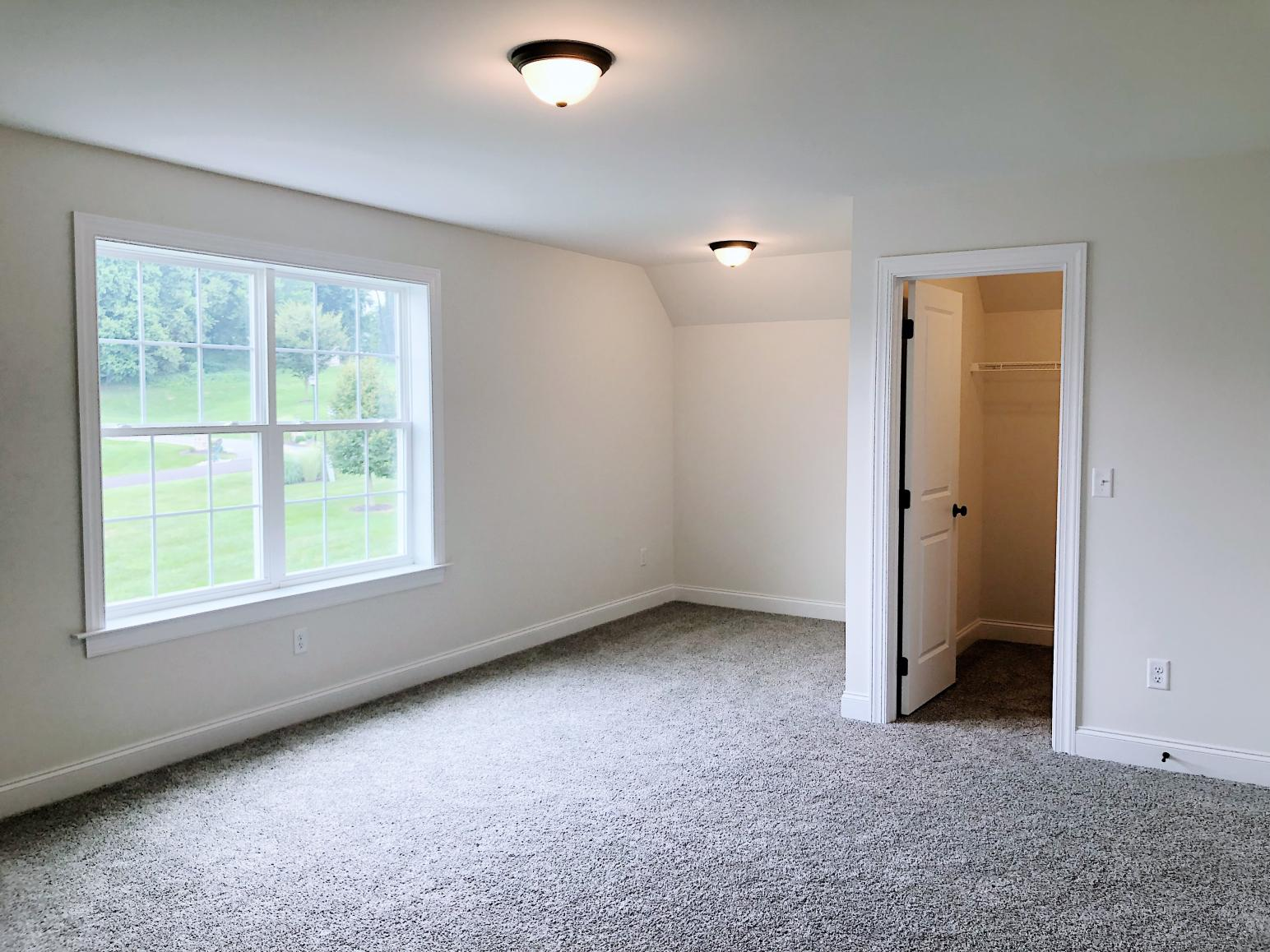 bedroom with walk-in closet