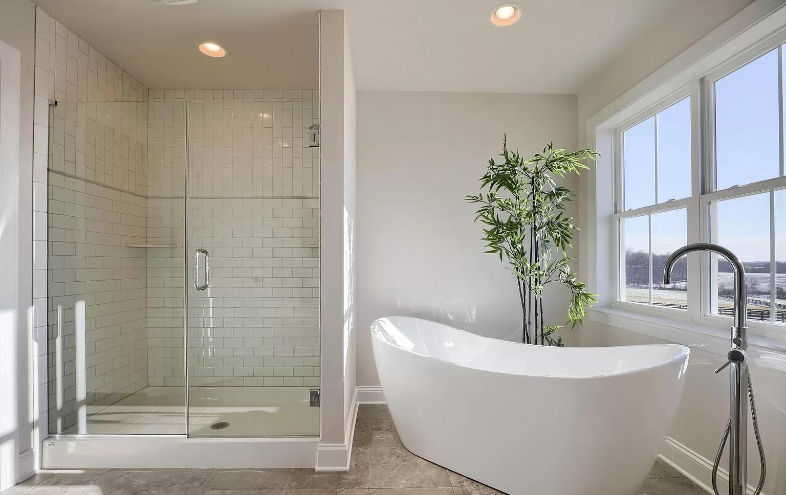 master bathroom with walkin show and freestanding bathtub